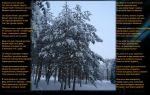 Стихи про мороз: красивые стихотворения русских поэтов для детей про холод, мороз