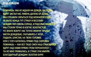 Стихи про дождь: красивые стихотворения известных русских поэтов классиков о дожде