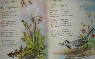 Стихи про дениса: красивые стихотворения с именем мальчика известных русских поэтов