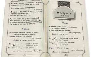 Стихи про животных, птиц русских поэтов: читать красивые стихотворения классиков