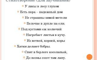 Стихи для детей 3-4 лет: детские, короткие для заучивания ребенку 3, 4 года