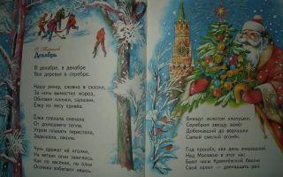 Стихи про елку: красивые стихотворения про новогоднюю ёлку для детей поэтов классиков