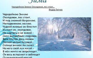 Стихи про зимний лес: красивые стихотворения русских поэтов для детей о лесе зимой