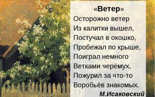 Стихи про ветер для детей и взрослых: красивые стихотворения о ветре классиков