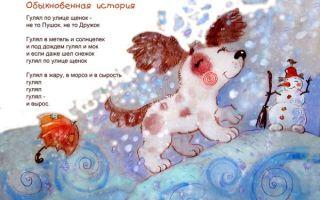 Короткие стихи про собак: красивые маленькие стихотворения для детей, взрослых