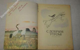 Стихи с добрым утром: красивые стихотворения классиков, русских поэтов про хорошее утро