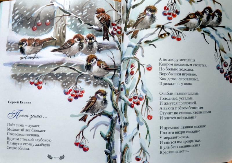 Стихотворение на 7 лет мальчику про зиму великих поэтов